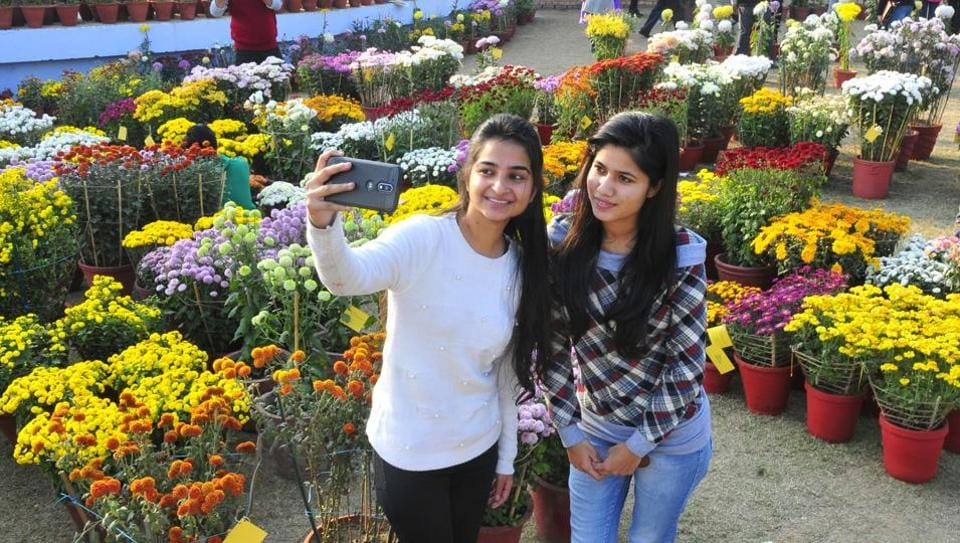 selfies,selfie,selfie with tourists
