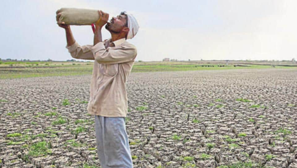 In this May 10, 2016, photo, a Shepard drinks water on the dry bed of Manjara Dam, which supplies water to Latur and nearby villages in Marathwada region, in the Indian state of Maharashtra.