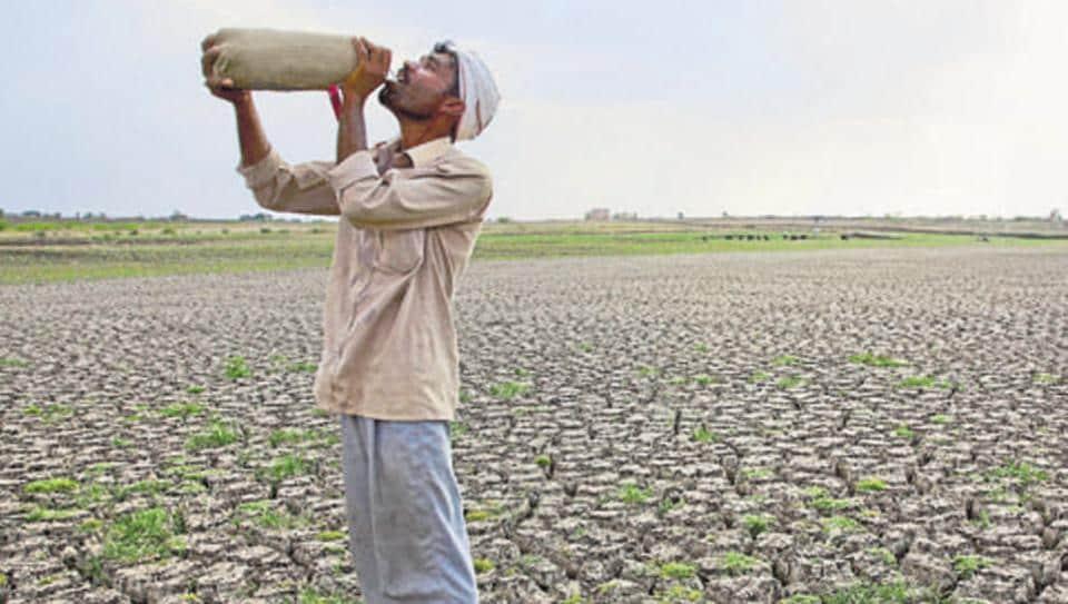 Maharashtra,Farmer Suicide,Maharashtra Farmer Suicide