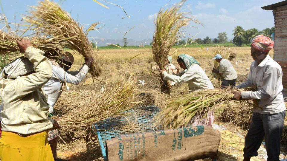 Artificial Intelligence,India,Farmers