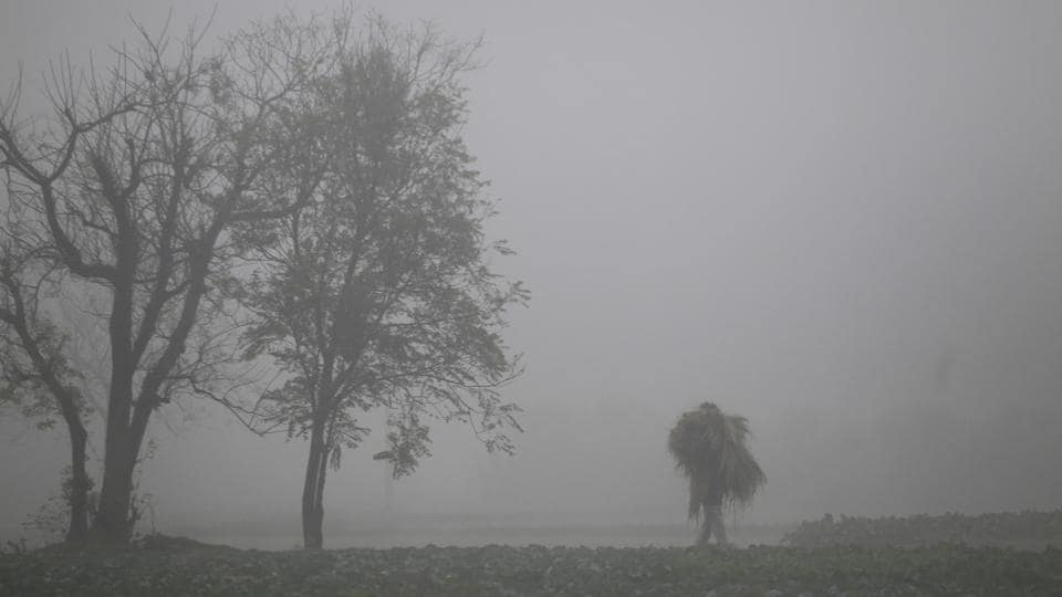 Severe chill prevailed in Adampur, which recorded a low of 4 degrees Celsius.