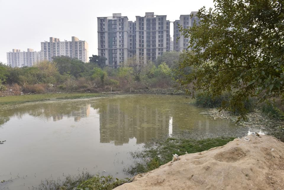 Gurgaon, India - Dec. 19, 2017: Water bodies at Sector-47, in Gurgaon, India, on Tuesday, December 19, 2017. (Photo by Sanjeev Verma/ Hindustan Times)