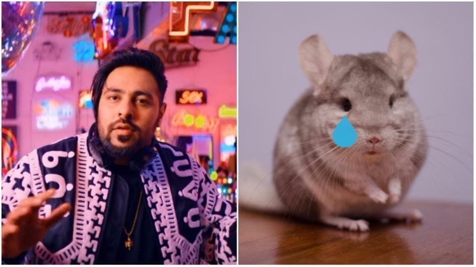 What did the poor chinchilla ever do to you, Badshah?