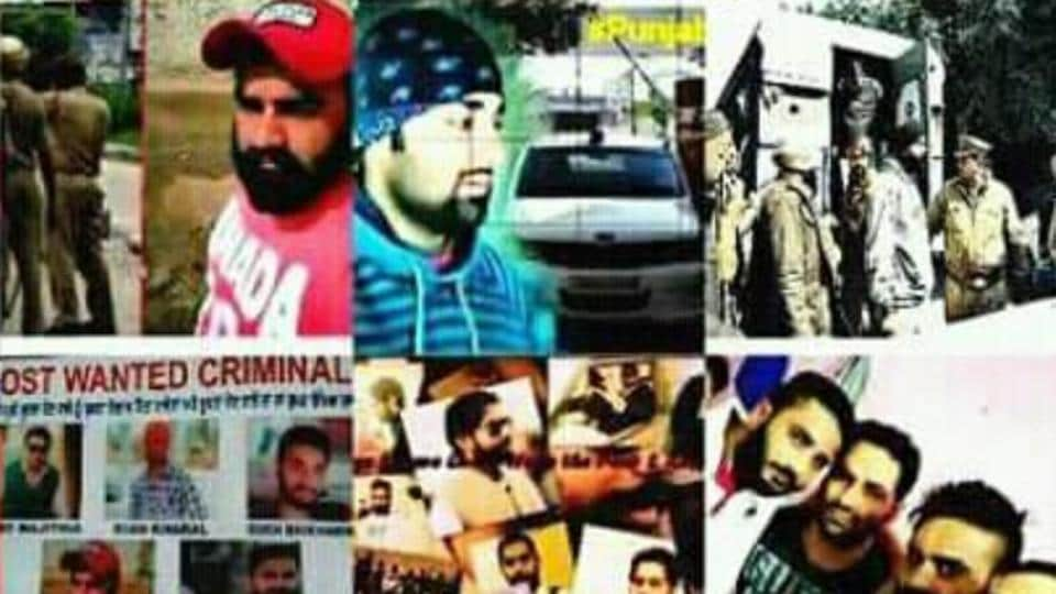 Investigation into cases of recent targeted killings have revealed that pro-Khalistani forces had radicalised the key accused — all young men — using the social media.