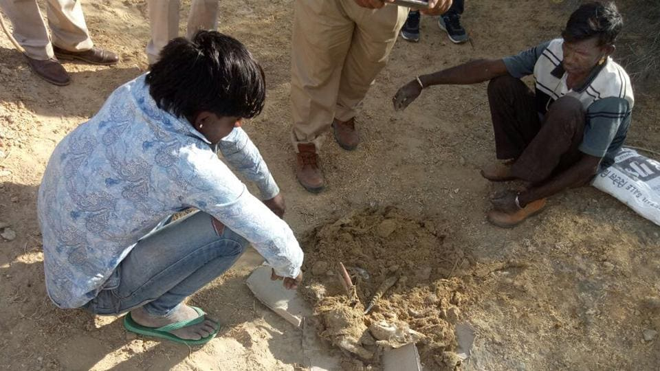 Forest department officials recover remains of a chinkara allegedly poached by poachers in Jalipa village in Barmer.
