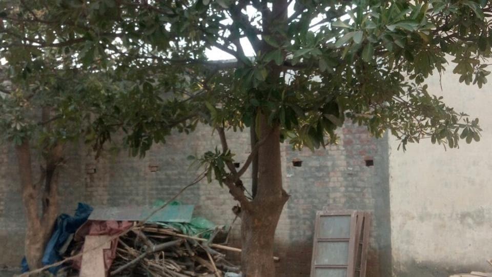 delhi,noida,girls hanging