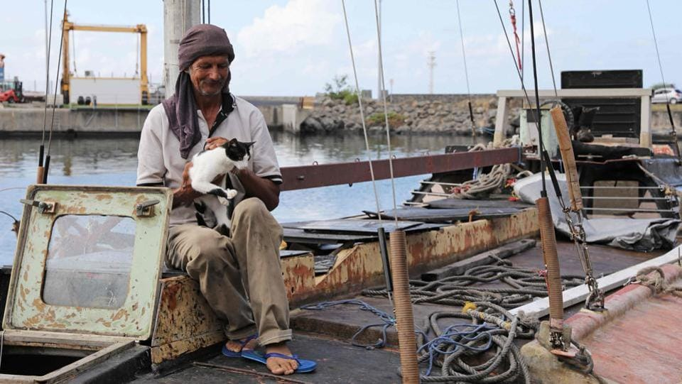 Zbigniew Reket, a Polish sailor who was rescued on December 25 in the Indian Ocean by the French coast guard, sits with his cat on his boat in Le Port, on the French overseas island of La Reunion. Reket told reporters he left the Comoros Islands off Africa's east coast in May for South Africa. He also claims to have survived on half a packet of Chinese soup per day and whatever he caught by fishing.  (Richard Bouhet / AFP)