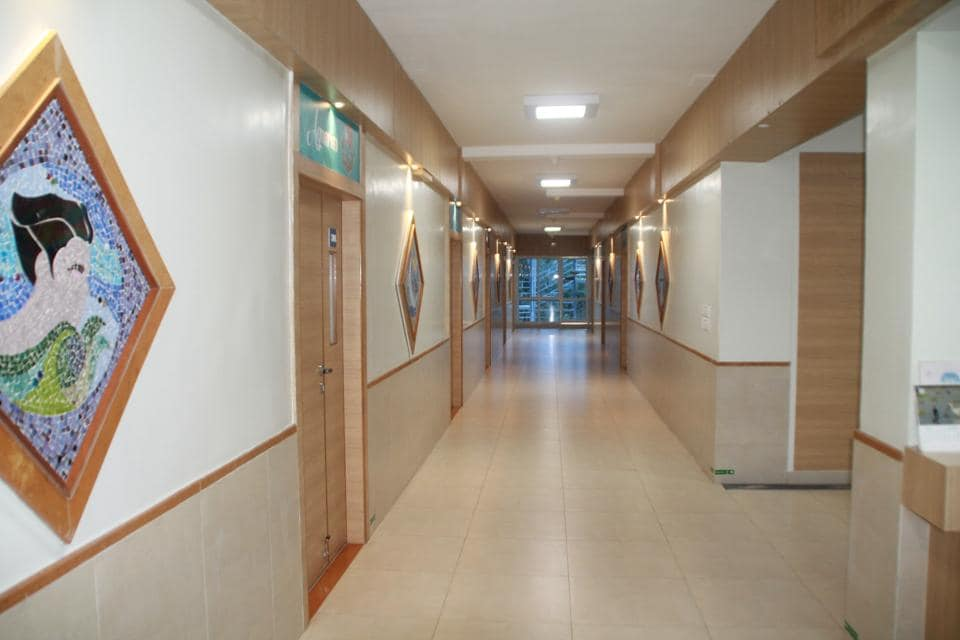 Paintings on the walls of hospital corridors are placed as a part of art therapy which helps reduce stress and induce happiness.