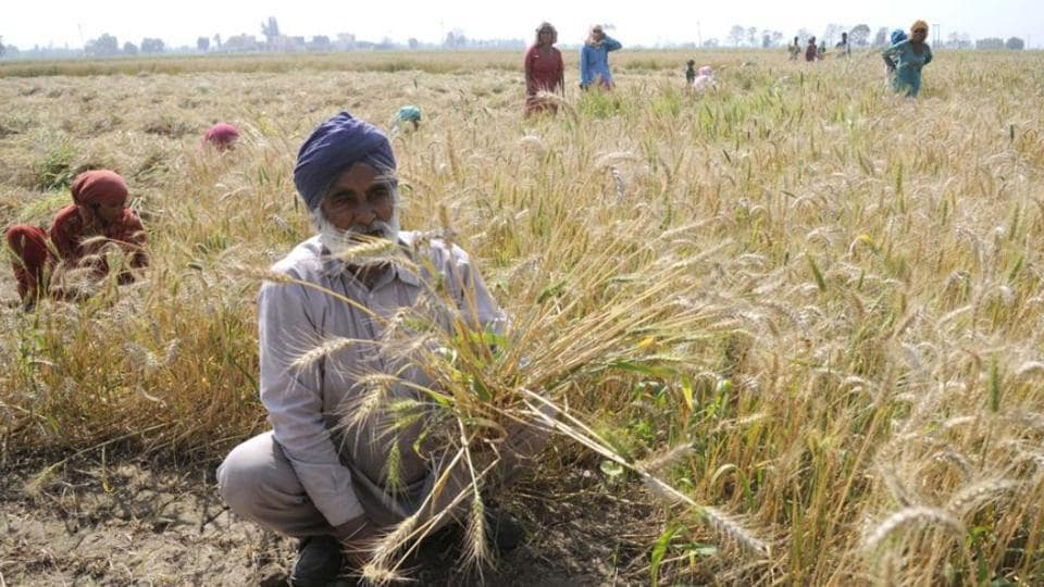The initial phase covers marginal farmers (with land less than 2.5 acres) who have taken loans from the state cooperative banks.