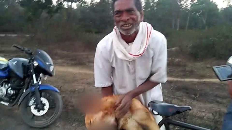 Chhattisgarh man,Killing dog,Man files case against son