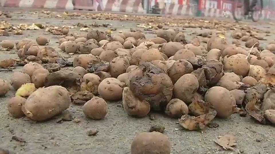 Opposition attacks Yogi as potatoes pave roads
