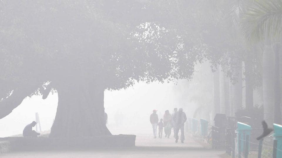 Haryana extends school holidays amid cold wave