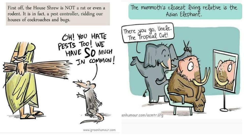 Comics,Cartoonist,Wildlife