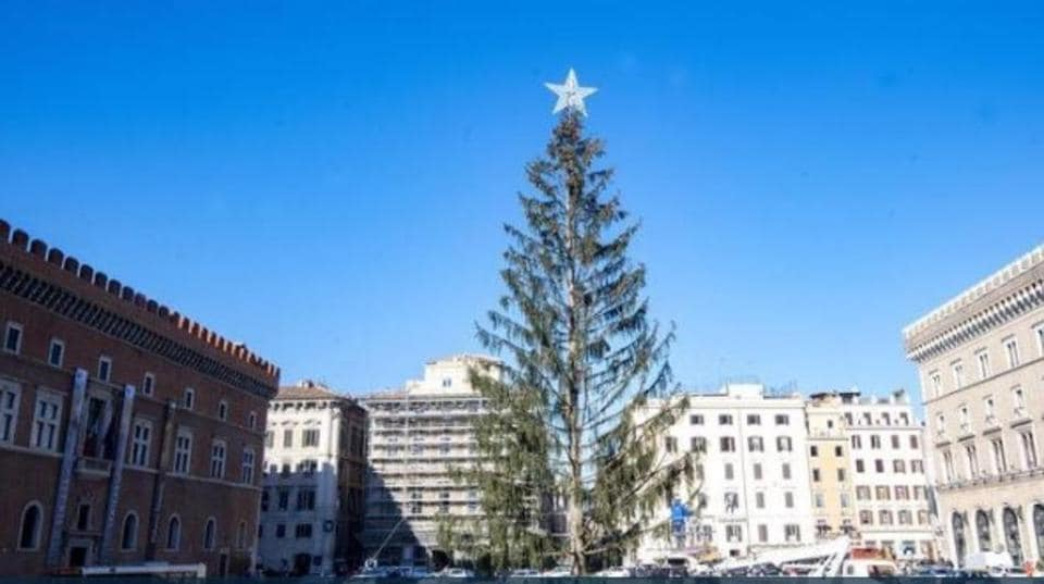 The Norway spruce — which was estimated to have cost the city some 48,000 euros ($57,000) — was declared dead on arrival in Rome from northern Italy in December, with many saying it was a metaphor for the state of the capital.