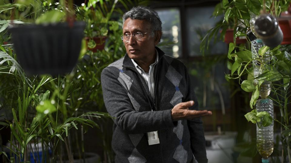 Meattle (pictured), says the building's greenhouse is like an air tank, where PM2.5 -- the most harmful particulates in the air -- register nearly zero compared with 415 outside, according to Paharpur's monitoring system. The level outside is more than 16 times the World Health Organization's safe limit. (Money Sharma / AFP)
