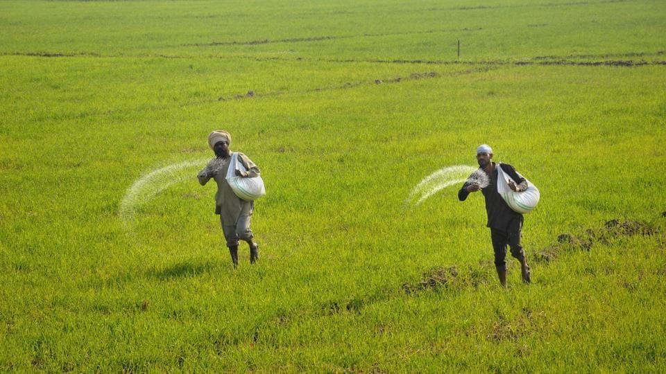 Rajasthan crop insurance firm,crop insurance firm,Rajasthan farmers