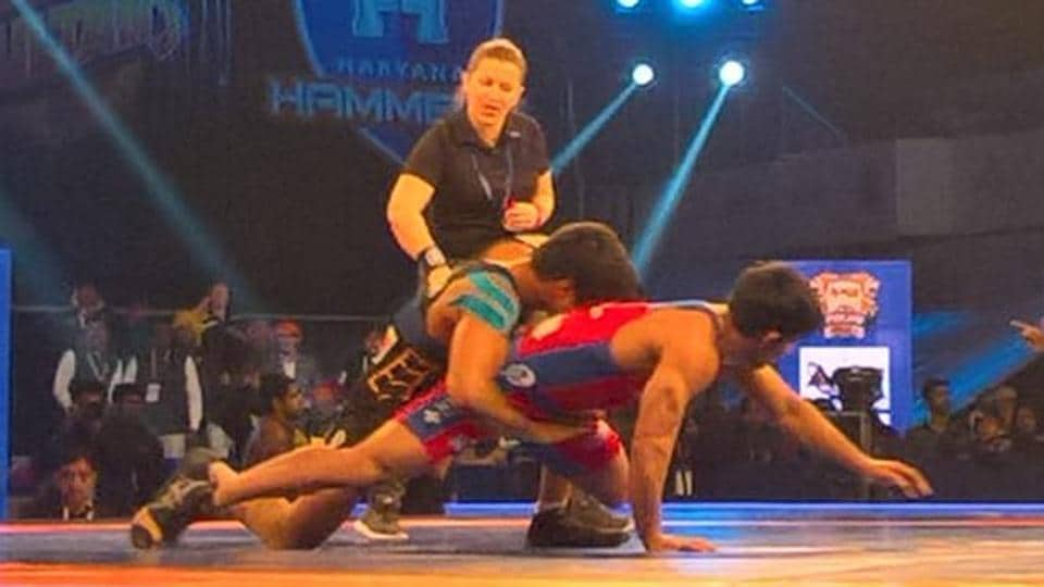 Haryana Hammers,Delhi Sultans,Pro Wrestling League