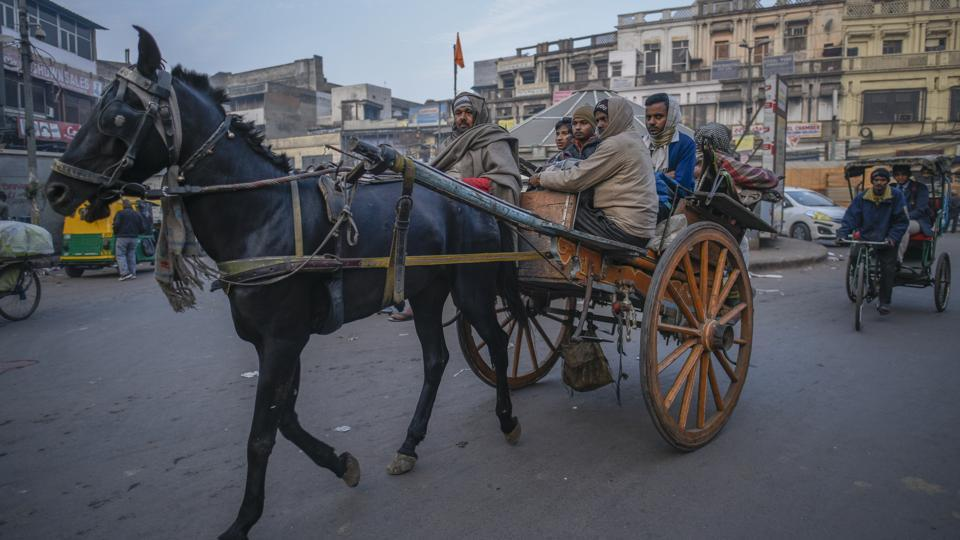 A horse cart on a winter morning at Chawri Bazar in Delhi. The city has banned entry of horses over spread of Glanders disease.