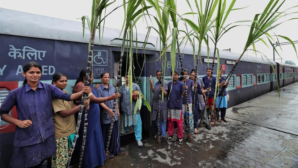 Members of Southern Railway Mazdoor Union celebrate  Pongal festival, in Coimbatore. (PTI)