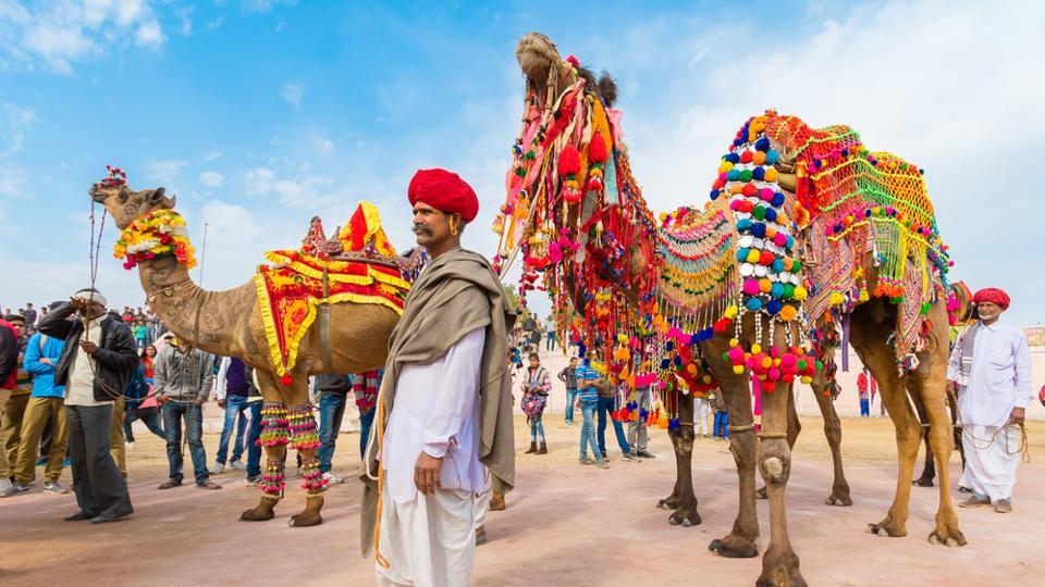 Bikaner Camel Festival is a yearly event in January that the city celebrates in honour of the ship of the desert — the camel.