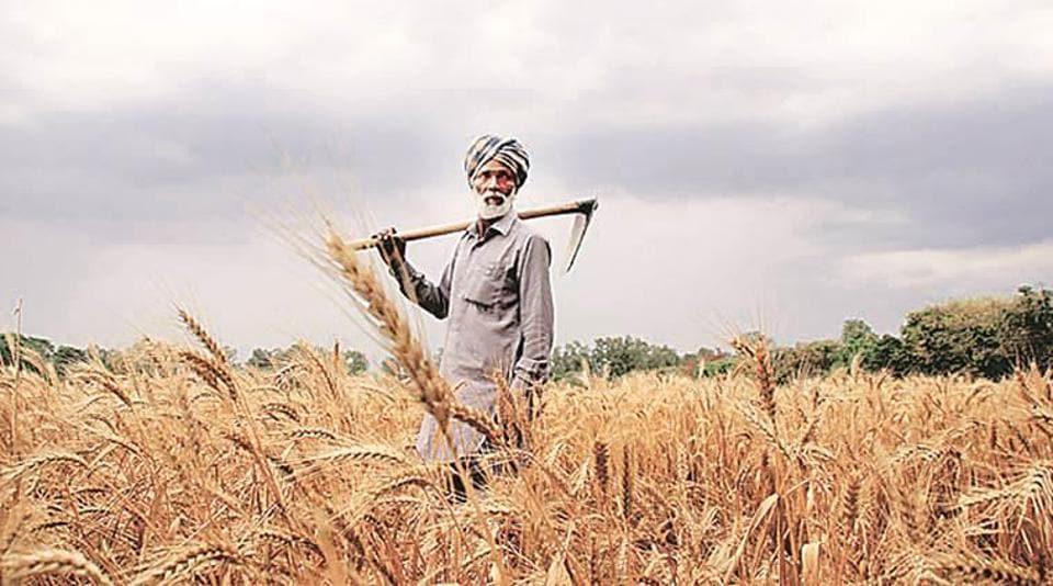 farm debt,farm debt waiver,Captain Amarinder Singh