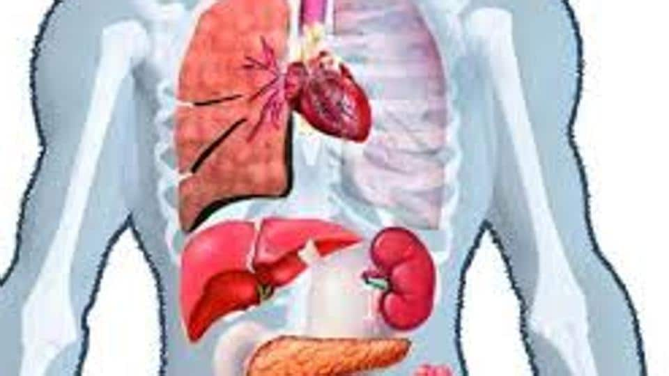 The problem has arisen in view of provisions of the Transplantation of Human Organs and Tissues Act, 1994, which permits retrieval of body organs only at hospitals registered under the law.