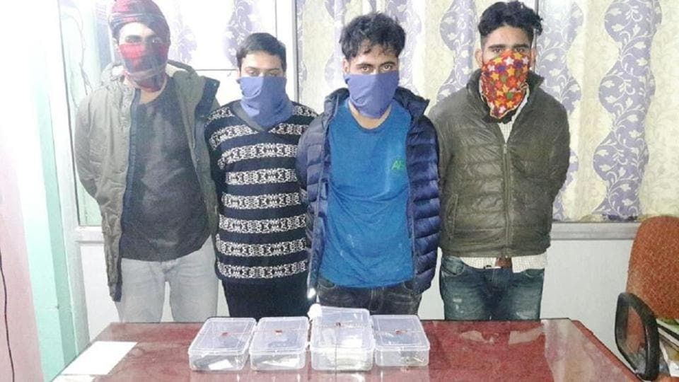 The four arrested gangsters, including Harsimrandeep Singh Simma, in Dehradun.