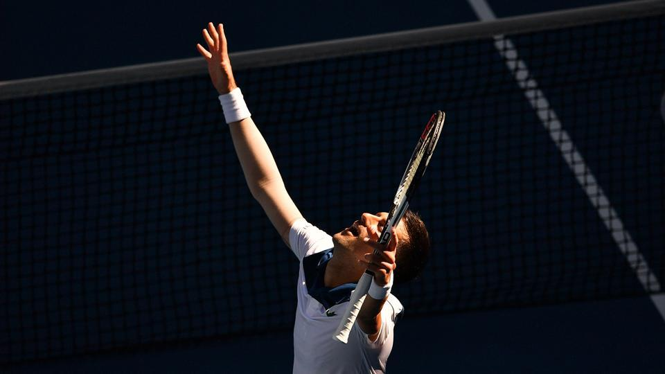 Novak Djokovic celebrates beating Donald Young of the US in their men's singles first round match on day two of the Australian Open tennis championship in Melbourne on Tuesday.