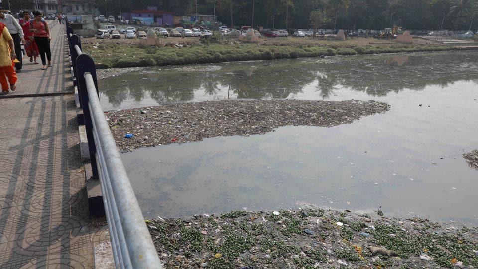 Pune,pollution,Mutha