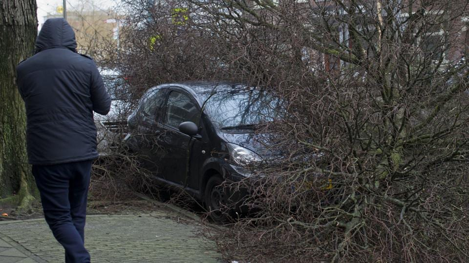 Deadly storm Friederike kills at least nine people across Europe
