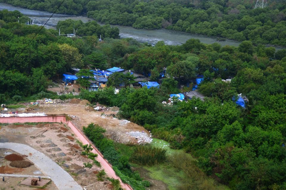 In 2014, the Bombay high court (HC) banned reclamation and construction on wetlands after Vanashakti filed a petition to protect them.