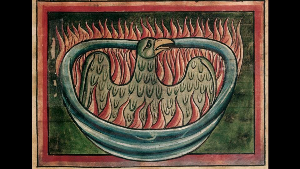 Detail of a phoenix rising from the ashes in a 13th-century bestiary. The 13th-century manuscript depicts a phoenix creating its own funeral pyre from branches and plants before being consumed by the fire. On day nine, it rises from the ashes, as does Albus Dumbledore's phoenix, Fawkes, in the Potter books.  (British Library)