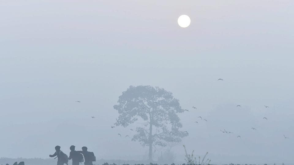 Delhi wakes up to a cold morning