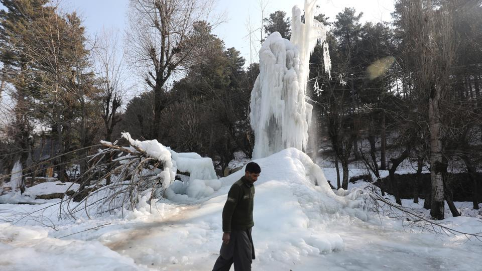 Icicles formed by a leaked water pipe on tree branches in Shopian, south of Kashmir.