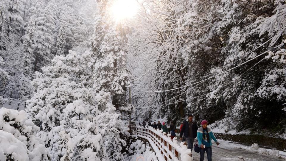Shimla has a tradition of being snowed under around the new year or Christmas.  (Deepak Sansta/HT)