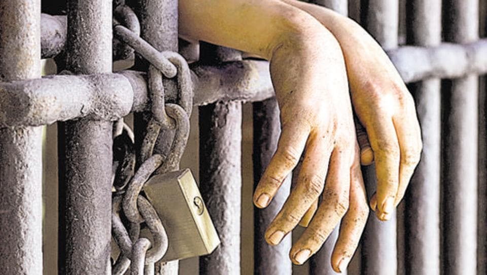 A director of a Gujarat-based pharma firm was arrested in a bank fraud case.