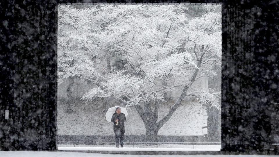 A man holding an umbrella makes his way through heavy snow at the Imperial Palace in Tokyo, Japan on January 22, 2018. (Kim Kyung-Hoon / REUTERS)