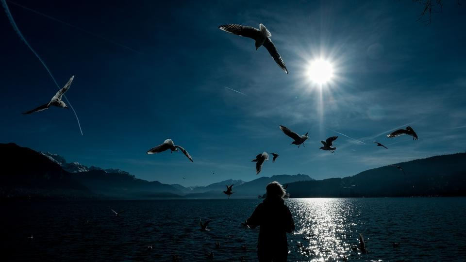 A woman feeds seagulls on the embankment of Lake Annecy in Geneva on January 24, 2018. (Yuri Kadobnov / AFP)