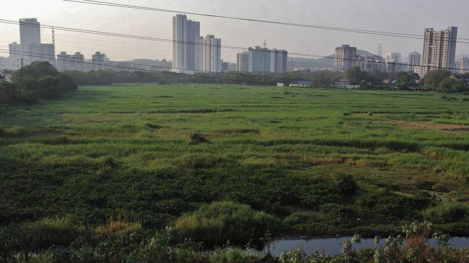 mumbai news,mumbai metro,metro car shed