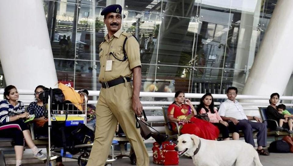 Andhra techie dies after falling off Chennai airport flyover