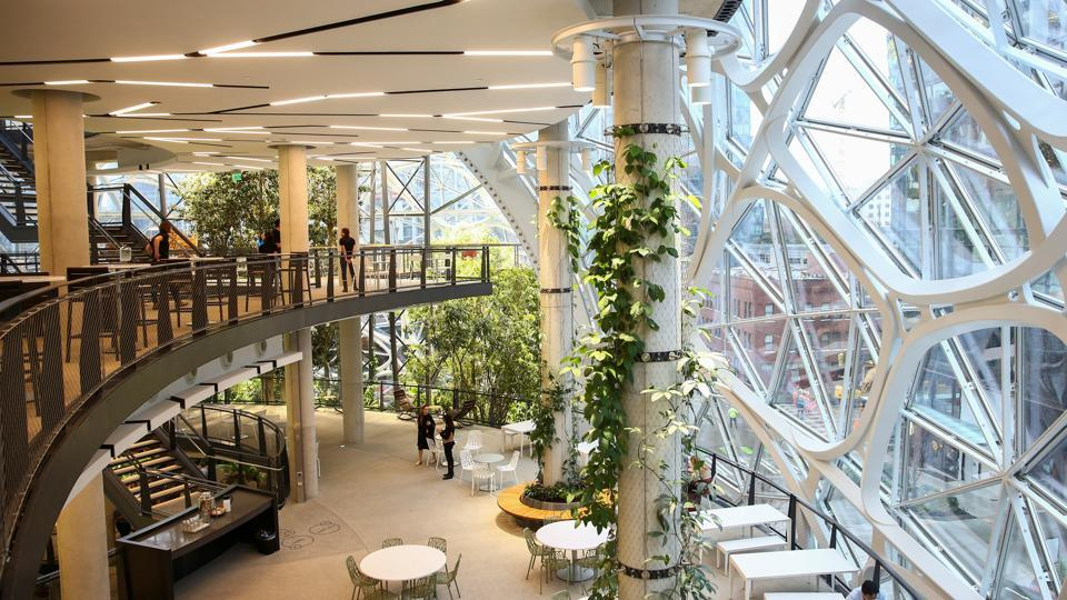 Lighting mimics a position near the equator, with 12 hours of shade and sun. During the day, the interior is maintained at 22 degrees Celcius with 60 percent humidity, to emulate a cloud forest ecosystem. (Lindsey Wasson / REUTERS)