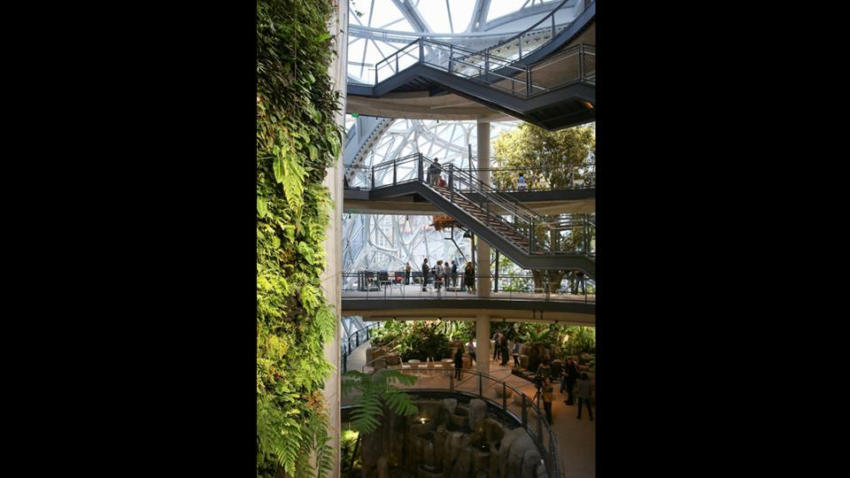 People tour the four main floors with a 60-foot high living wall to the left. The space is more like a greenhouse than a typical office. Instead of enclosed conference rooms or desks, there are walkways and unconventional meeting spaces with chairs. (Lindsey Wasson / REUTERS)