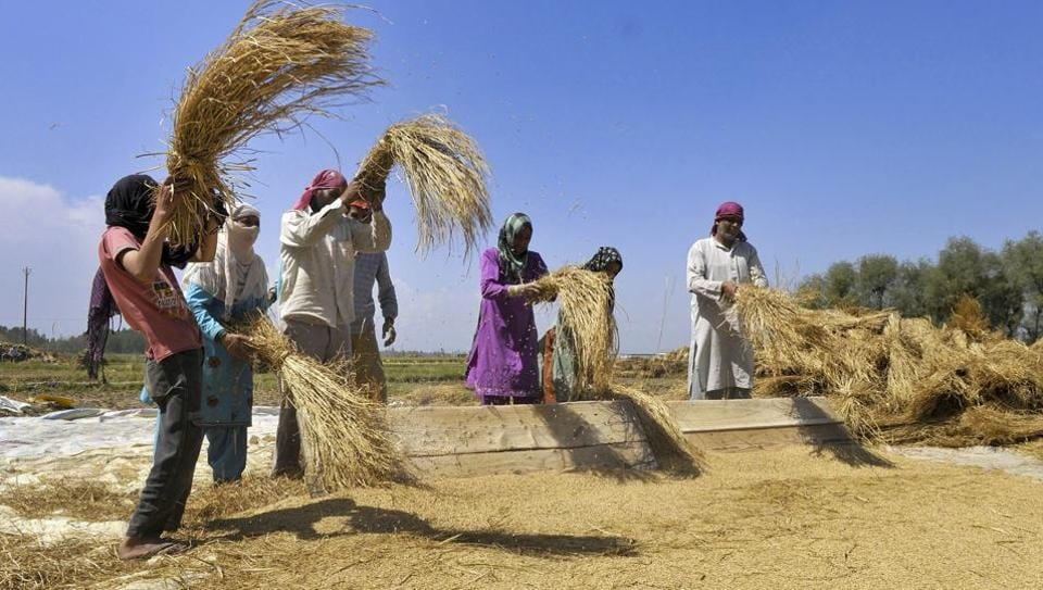 Jaitley said federally determined minimum support prices (MSPs) for summer-sown (kharif) crops this year would be set at 1.5 times the cost of cultivation.