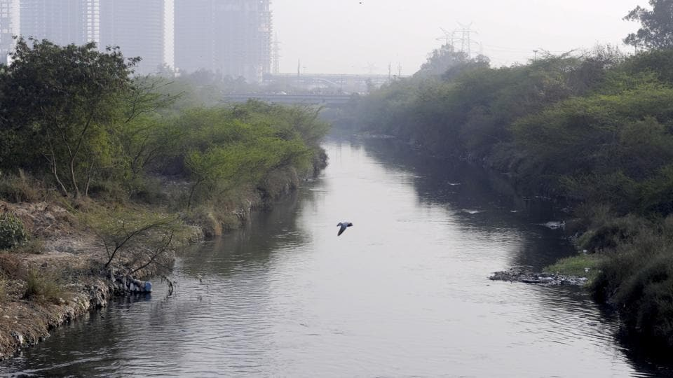 Environmentalists have demanded cleaning of rivers and segregation of waste.