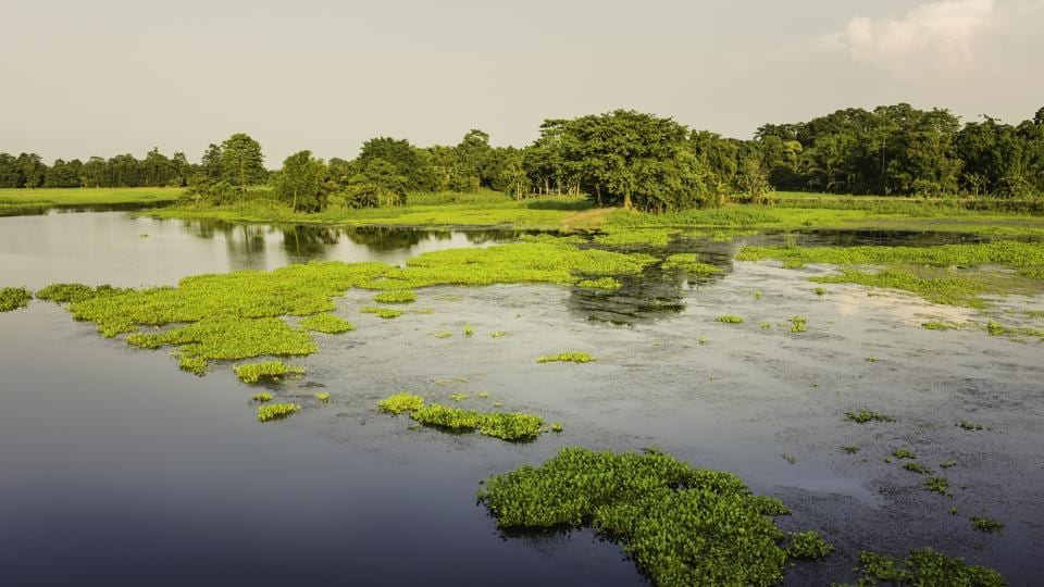 Majuli is home to approximately two lakh people consisting of Brahmins, Kalitas, Mishings, Deori and more.