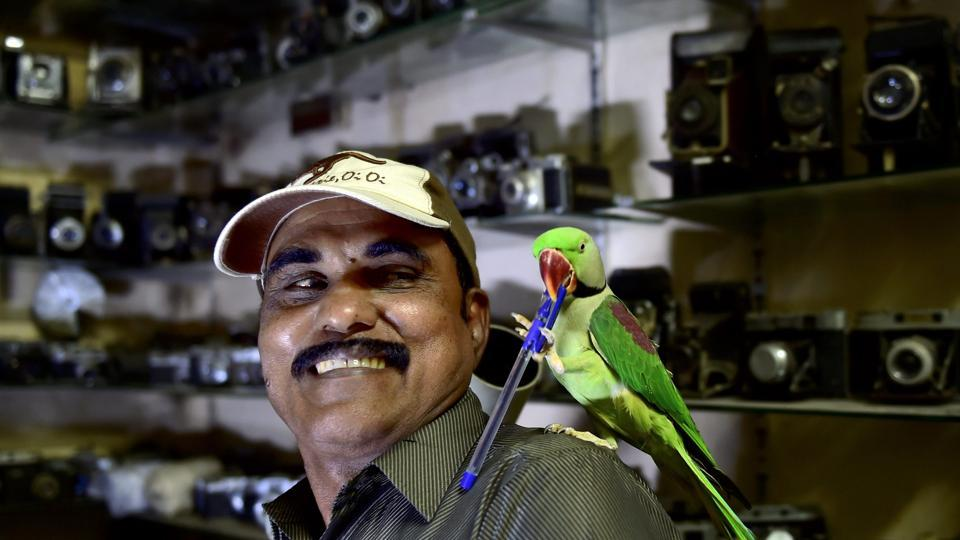 Joseph Sekar, known popularly as 'Birdman' in Chennai's Royapettah  area, seen with a parakeet at his home in Chennai. Sekar spends 40% of his income on feeding parakeets, who first visited him after the 2006 Southeast Asia floods. Nothing brings the camera technician by day, more happiness than watching the birds fly and knowing they are well-fed and healthy. (R Senthil Kumar  / PTI)