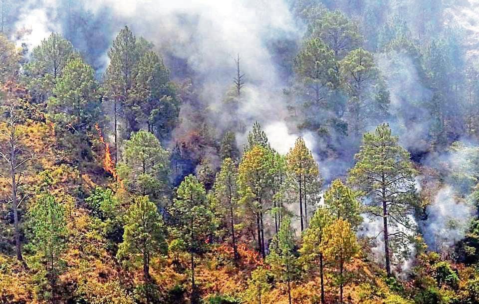 Uttarakhand News,Dry spell,forest fire