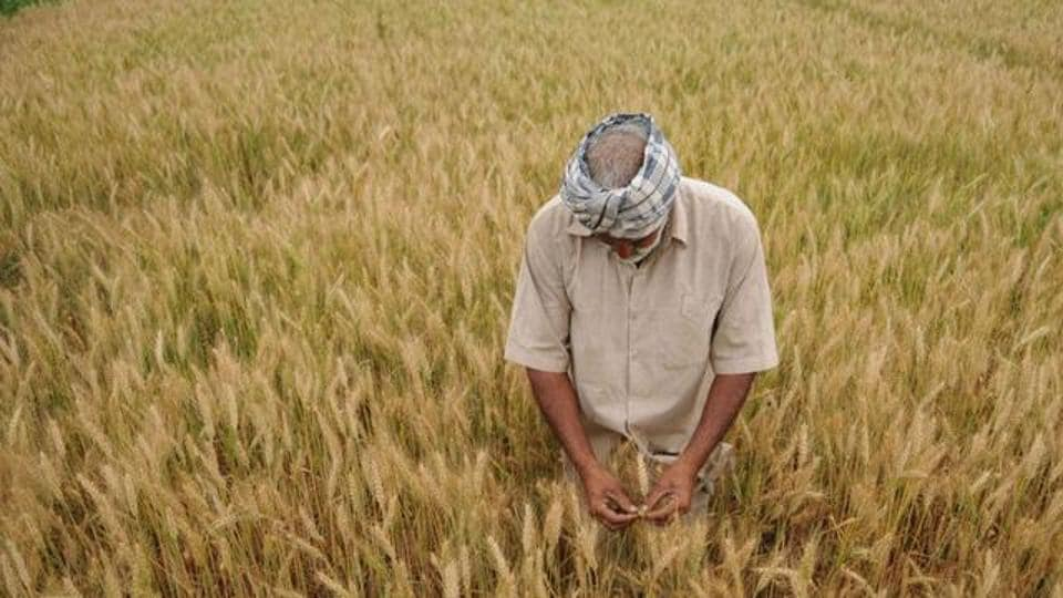 A debt relief scheme for farmers was implemented across India during the UPA regime.