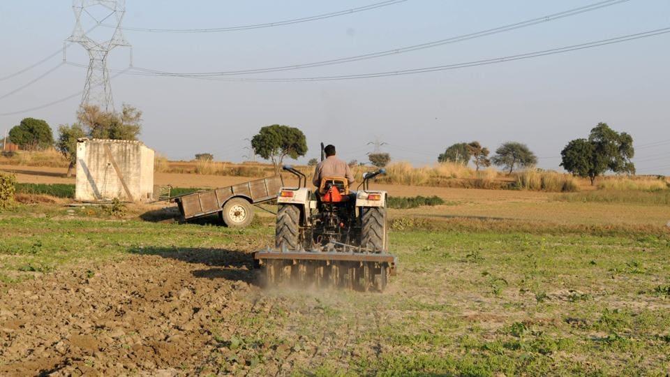 A farmer ploughs fields on a tractor in Sultanpur village.
