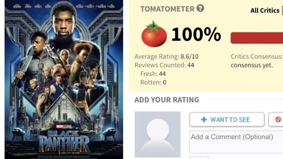"A perfect 100: Critics have variously called it ""a love letter to every black person"" to ""the best Marvel movie so far, by far""."